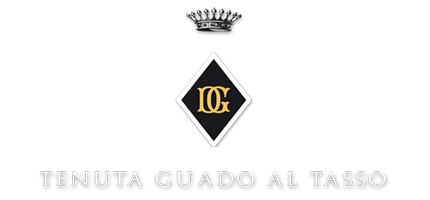 Antinori Tenuta Guado al Tasso